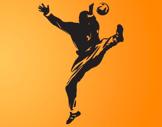 photo stickers muraux handball
