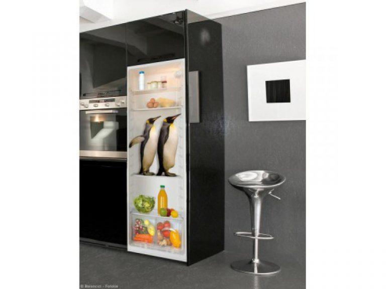 photo deco sticker frigo