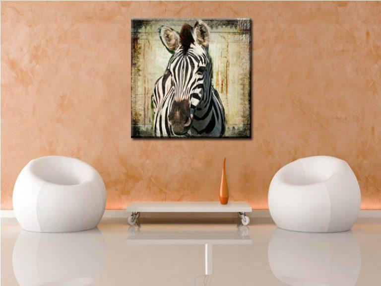 photo décoration murale zebre