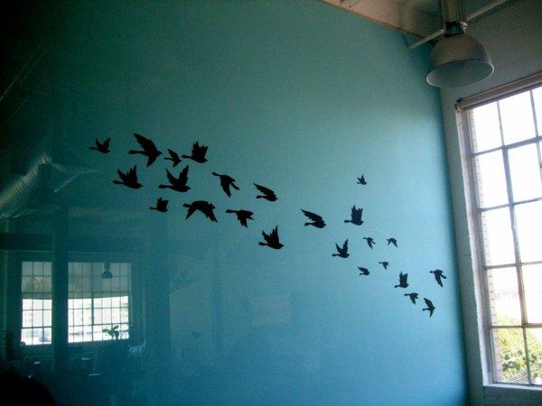 photo déco murale oiseaux