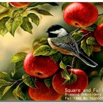 Décoration murale oiseaux 3d