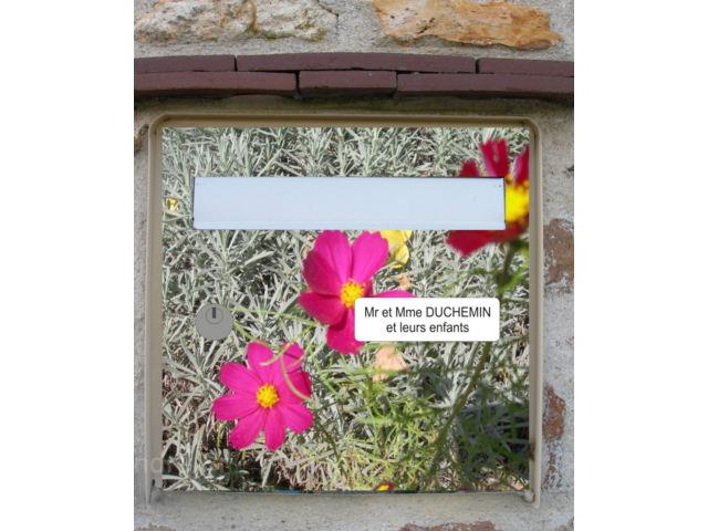 photo stickers deco jardin